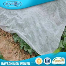 Hot Product Agricultural Tree Plants Non Woven Plant Cover