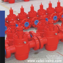 Cast/Forged Steel 2000psi~20000psi RF Flange API 6A Check Valve