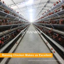 Utilisation normative de ferme 10000 couches Une cage de poulet de couche de type