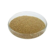 choline chloride rumen protected
