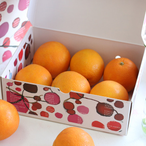 4 Color offset Printed Fruit Packaging Box