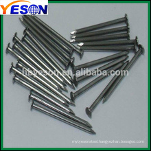 common nail/fence staples u nails/nail factory