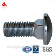 (ss304,316,A2,A4)stainless bolt