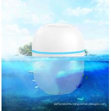 Portable Face Mist Nano Mist Sprayer