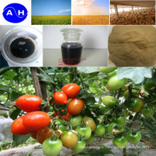 Boron Nutrient Liquid Foliar Fertilizer Amino Acid Chelate