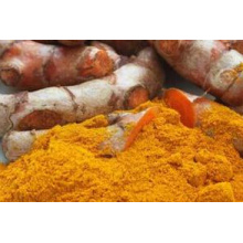 Factory Price Supply Natural Curcuma Longa Extract
