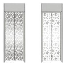 Fjzy-Elevator (FJ8000-1) Elevador Pasajero Fjzy-249