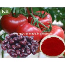 Prévenir le cancer naturel 10%, 20%, 30% d'extrait de tomate lycopène