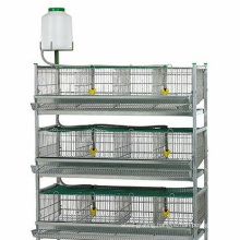 automatic design battery layer chicken cages/ commercial quail layer cage