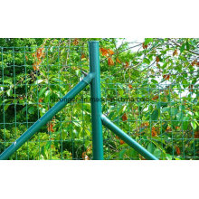 Holland Wire Mesh/Holland Fence/Euro Fence/Wire Mesh