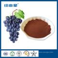 Extracto de semilla de uva orgánico 95% OPC