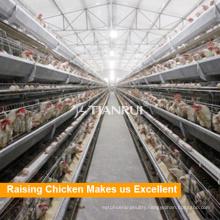 Poultry Equipment Manufacturer Tianrui Layer Poultry Farm House Design