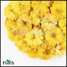 FT-003 chrysanthèmes séchés en gros parfumé saveur fleur tisane