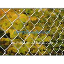 HOT!!!Diamond Wire Mesh/Chain Link Fence