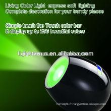 couleurs vivantes lumière avec 256 couleurs changeant de couleur a mené la lumière d'humeur