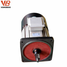 squirrel cage electric hoist motor for philippines, Vietnam, Thailand