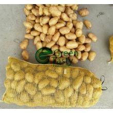 Nouveaux légumes de la culture Pommes de terre fraîches