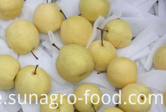 Natural Snow Pear