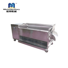 Soft brush fruit and vegetable cleaner vegetable and fruit washing machine