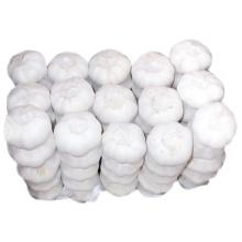 Hochwertiger neuer Ernte-chinesischer reiner weißer Knoblauch
