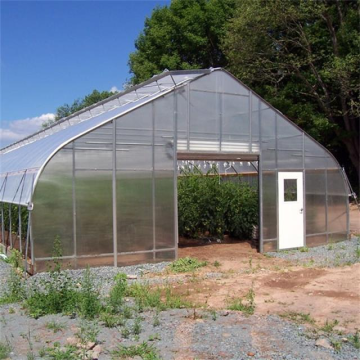 Single tunnel greenhouse polycarbonatevegetable tunnel greenhouse