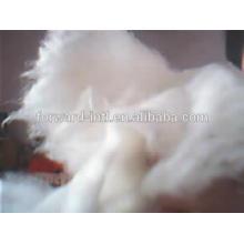 15.5mic couleur blanche intérieure mongolia cachemire