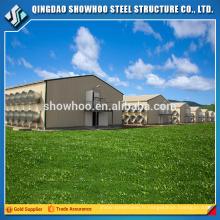 Bâtiment en acier léger Projet de construction Bâtiment de ferme de poulet