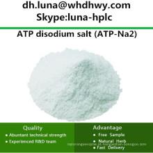 China Fornecimento CAS: 987-65-5 ATP-Na2 / ATP sal dissódico Adenosina