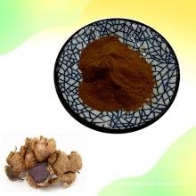 Black Ginger Extract/Kaempferia Parviflora Extract Powder