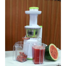 2013 Masticating Slow Juicer Extractor(Low speed, Rpm 80, DC motor, CE/CB/GS) AJE318