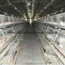 Cage de poulet de couche d'oeufs de Chine