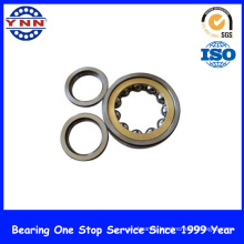 Hot Sell and Top Precision Cylindrical Roller Bearing (NU 207)