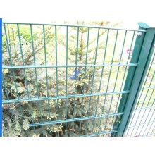 Double barrière grillagée pour jardin (TS-L101)