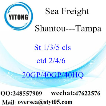 Shantou Port Sea Freight Expédition à Tampa