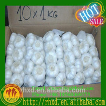 China Jinxiang White Garlic Planter Bulk Garlic Importer Price