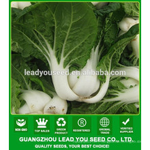 NCC02 Xiami chinese cabbage seeds factory, pak choi seeds