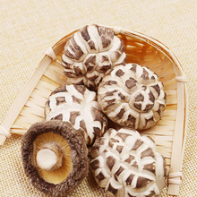 Low Price Dried White Flower Shiitake Mushroom