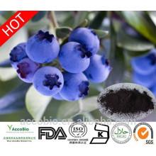 Extrato de Mirtilo Natural 100% de Alta Qualidade 10: 1 Antocianidina 25%