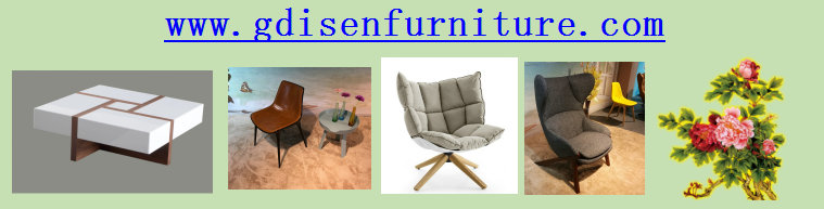 disen furniture