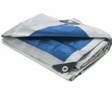 PE Tarpaulin Silver Color