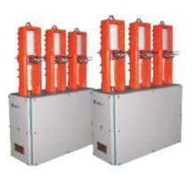 Переключаемый вакуумный выключатель конденсатора (ZN12-12 / 630-12.5J)