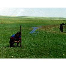 Feld gesponnener Maschenzaun hergestellt in China mit niedrigem Preis