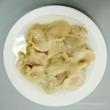 White Pleurotus In Brine