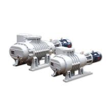 Biogas Compressor Metallurgy Vacuum Pump
