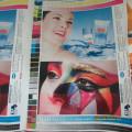 Ci Flexographic Press