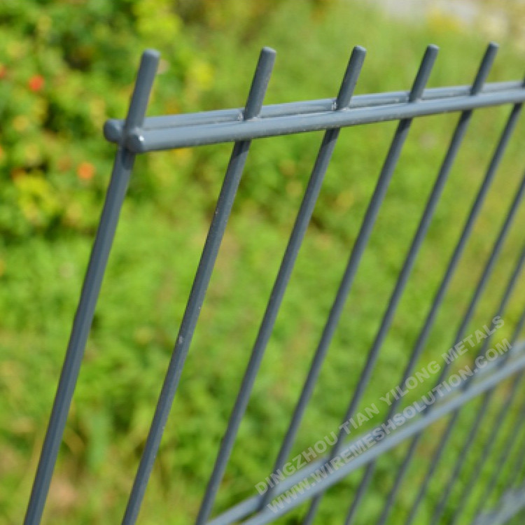 6/5/6 Double Wire Fence Panel