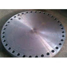 Asme B16.5 Forged Carbon Steel Blind Flange