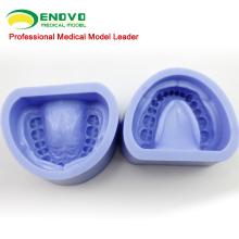 VENDRE le bloc dentaire standard de cavité de caoutchouc de silicone 12597 28teeth permanent