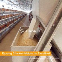 Am besten bauen Sie dauerhafte Huhn-Geflügel-Fütterungsausrüstungen auf