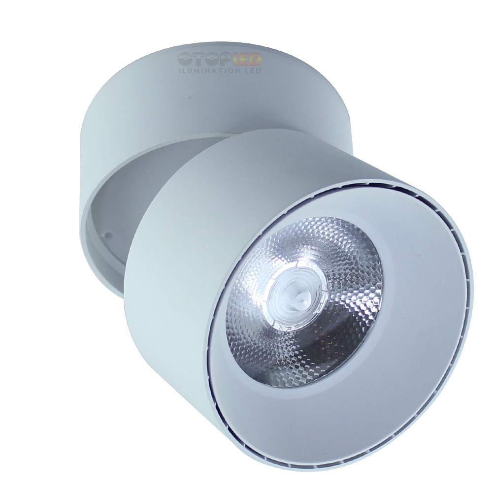 Surface Mount Downlight Adjustable